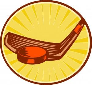 2015-2016 Red Wings Hockey Season